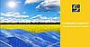 Чому в Україні стрімко розвивається сонячна енергетика?