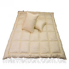 Зимнее одеяло Лебяжий пух 195*215, фото 2