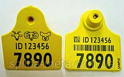 Ушная бирка для свиноматок ANIMAL ID 50x50 мм