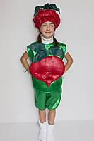 Детский маскарадный костюм Буряк 3-6 лет