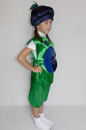 Костюм Сливы для девочки на праздник осени 3-6 лет, фото 2