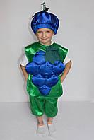 Детский маскарадный костюм Виноград для мальчика 3-6 лет