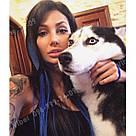Тёмно синие волосы на заколках, фото 6