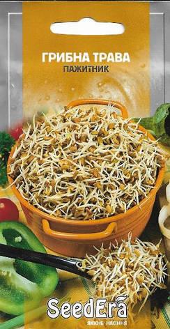 Пряно-ароматичная культура Грибная трава (пажитник)Seedera, 1 г, фото 2