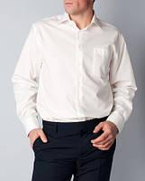 Мужская классическая рубашка цвета шампань