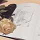 """Електронний формат.""""Мій найдовший піст в Инстаграмм"""". Т. Новицька. Книга про війкового діяльності Lashmaker, фото 2"""
