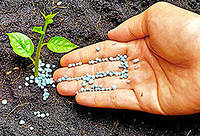 Елементи живлення рослин: Макроелементи, Мезоелементи та Мікроелементи