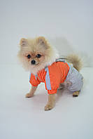 Комбинезон для собаки теплый Дуэт Новинка, фото 1