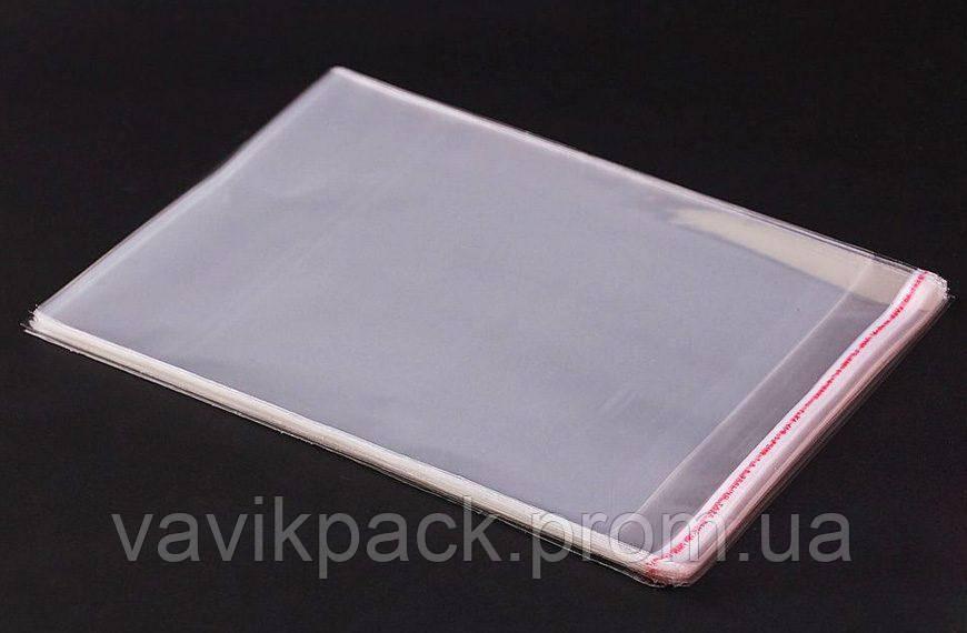 Полипропиленовый пакет с клапаном 17*22 см (20 мкм)
