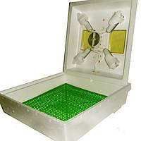 Инкубатор Квочка МИ-30 на 70 яиц, фото 1