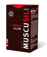 Эффективные препараты для повышения потенции: Мускусил форте