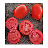 Семена томата 1509 F1 500 шт  Lark Seeds Ларк сидс