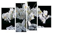 Модульная картина Декор Карпаты 110х70 см Белые Орхидеи (M4-K797)