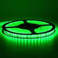Светодиодная лента 60LED зеленая влагозащищенная Light Studio 3528