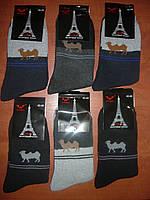 Мужские махровые носки Nanhai. Стречевые. р. 42-48. Хлопок, фото 1