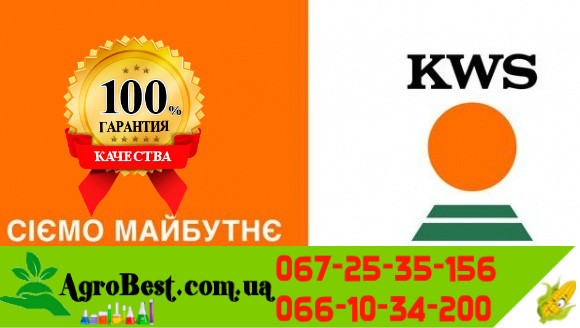 KWS КАМАРІЛЛАС(ФАО 320)