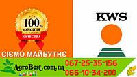 KWS КАРИФОЛС(ФАО 230)