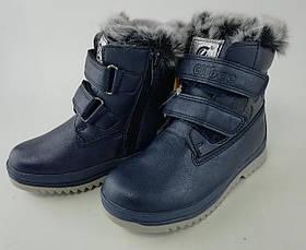 Зимние ботинки для девочек Синий Clibee Румыния