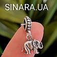 Шарм бусина Пандора Слон серебро 925 - Серебряный Слон шарм Пандора, фото 2