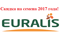 Артик Евралис семена подсолнечника