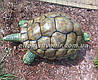 Садовая фигура Черепаха большая, фото 3