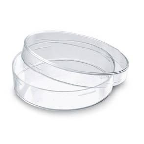 Чаша Петри 60 мм, стекло, фото 2
