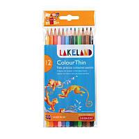 Набор цветных карандашей Lakeland Colourthin Wallet в блист. 12цв, Derwent