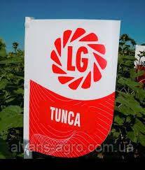 Тунка Лимагрейн семена подсолнечника