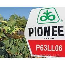 Пионер P63LL06 (П63ЛЛ06) семена подсолнечника