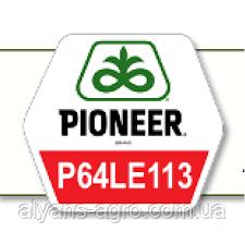 Пионер P63LE113 (П63ЛЕ113). Под Гранстар семена подсолнечника