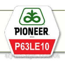 Пионер P63LE10 (П63ЛЕ10). Под Гранстар семена подсолнечника