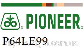 Пионер P64LE99 (П64ЛЕ99). Под Гранстар семена подсолнечника