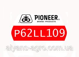 Пионер P62LL109 (П62ЛЛ109) семена подсолнечника