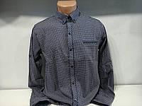 Рубашка мужская батал (на кнопках) RCB RECOBAR