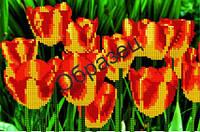 Схема для вышивки бисером «Красно-желтые тюльпаны»