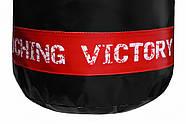 Боксерский мешок V`Noks Inizio, фото 4