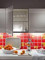 Колекція керамічної плитки 100х100 Orly для кухні