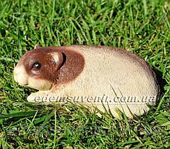 Садовая фигура Морская свинка, фото 3