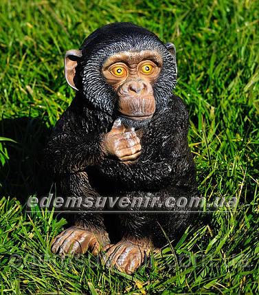 Садовая фигура Шимпанзе средний, фото 2