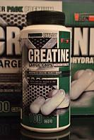 VISION Creatine Monohydrate 100 large caps + 1 пакетик CARBS-X