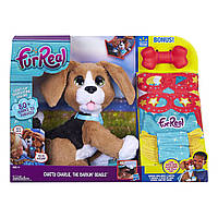 Интерактивный говорящий щенок Чарли бигль FurReal Friends от Hasbro , фото 1