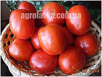 Семена томата детерминантного для переработки Чезена F1 (1000семян) Libra Seeds (Erste Zaden)