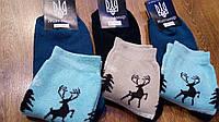 """Шкарпетки жіночі махрові,""""Житомир Missis""""Олені, фото 1"""