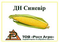 Семена кукурузы ДН СИНЕВІР (ФАО 190), 1 поколение, 2018 г.у. (Рост Агро)