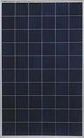 Солнечная батарея Yingli Solar YL280P12B-29b (12BB)
