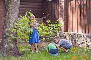 Квест в загородном комплексе для Ульяна 8 лет 07.07.2018 2