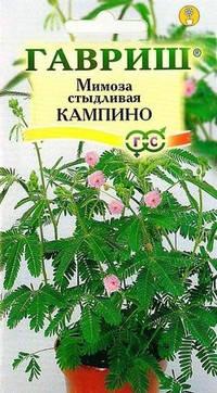 Семена Мимоза стыдливая Кампина 0,1г ТВ ГАВРИШ, фото 2