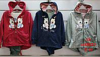 Спортивный костюм тройка для девочек Setty Koop 8-16 лет, фото 1