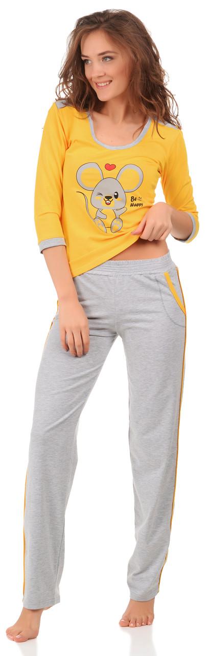Кофта штани 0143/144 Barwa garments