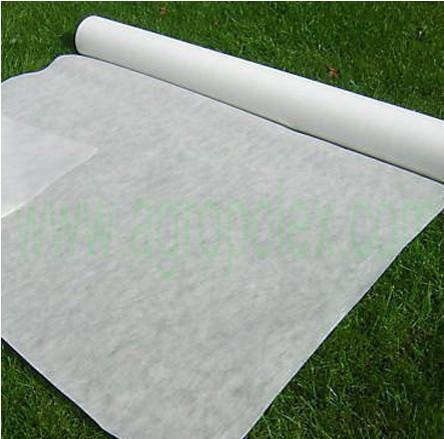 Агроволокно біле, щільність 50г/м2 , розмір 1.6мх100м